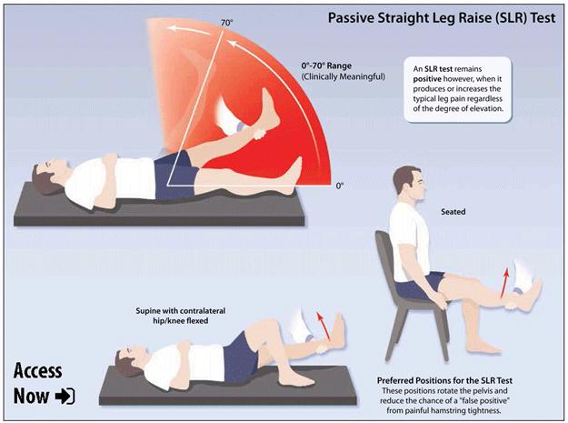 Back Health Most Recent | healthPlexus.net