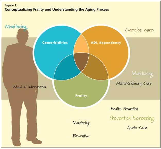 Elegant Ongoing Controversies In Defining And Using The Frailty Concept Frailty Is  Not Yet A Clinical Instrument. Controversies And Grey Areas That Persist  Include ...