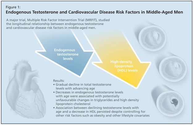 a study on the relationship between physical activities and the risk factors of cardiovascular disea The relationship between physical activity level and coronary heart disease risk factors study investigated the relationship between level of physical.